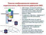 Jak3 лечение – Д. Тяжелая комбинированная иммунная недостаточность, обусловленная дефицитом JAK-3